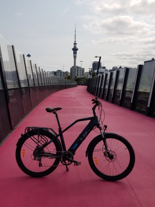 Magnum Voyager on the pink path/te ara i whiti
